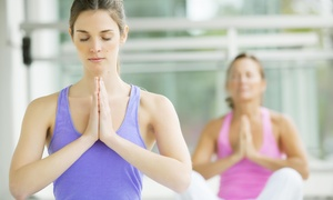 Shapes Total Fitness For Women: $22 for $49 Groupon — Shapes Fitness for Women in New Port Richey