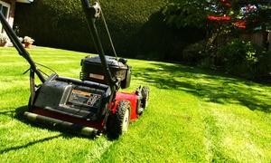 CA Helferservice: 5 od. 7 Std. umfangreicher Service für Gartenarbeit inkl. Anfahrt im Umkreis von 30 km bei CA Helferservice   ab 69,90 €
