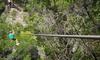 Wimberley Zipline Adventures - Dripping Springs-Wimberley: Zipline Tour with GoPro Headset Rental for One, Two, or Four at Wimberley Zipline Adventures (Up to 38% Off)