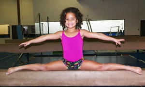 Southwest Gymnstics: Eight Weeks of Class or Six Open Gym Sessions for Kids at Southwest Gymnastics Training Center (Up to 57% Off)