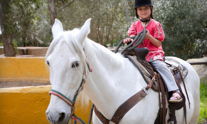 Creek Bend Stables - Catoosa Springs: Two or Four 60-Minute Horseback-Riding Lessons at Creek Bend Stables (Up to 57% Off)