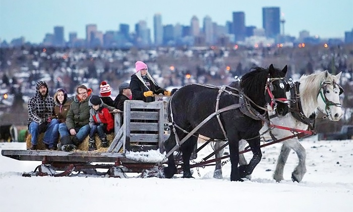 Horsin Around - Calgary : Christmas Sleigh Ride for Two Adults or a Family of Four at Horsin Around (Up to 25% Off)