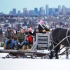 Horsin Around—Up to 25% Off Christmas Sleigh Ride