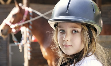 $199 for a Five-Day Horseback-Riding Camp at Prairie Gem Stables LLC ($375 Value)