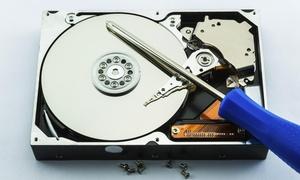 Expert Data Forensics: $59 for $100 Groupon — Expert Data Forensics