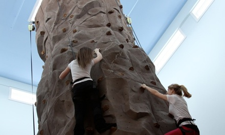 Rock Climbing, Fun House Entry, and Arcade Credit for 2 or 15 at Bayville Adventure Park (Up to 53% Off)