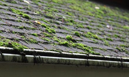 Home Moss Removal or Spray or Pressure Washing from Friendly Giant Window and Gutter Cleaning (Up to 58% Off).