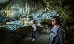 Domaine des Grottes de Han: 1 PassHan (+4ans): Visite à la Grotte de Han, au Parc Animalier, au PrehistoHan et Han1900