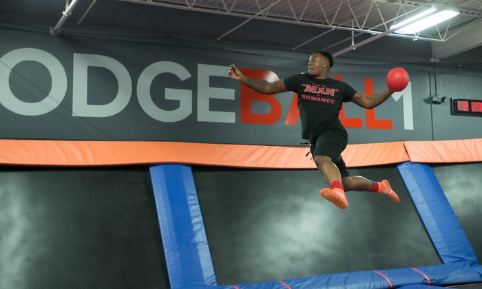 image relating to Printable Sky Zone Waiver named Sky Zone - Fairview Heights, IL Groupon