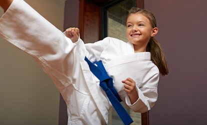 C$19.50 for 10 <strong>Martial-Arts</strong> Classes at Pro Dojos (Up to C$150 Value)