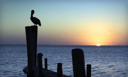 Stay at 3-Star Top-Secret South Padre Island Hotel in Texas, with Dates into February