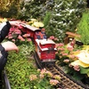 Chicago Botanic Garden – Up to 49% Off Wonderland Express