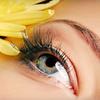 Up to 60% Off Eyelash Extensions at Salon Nova