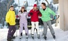 Southern School of Snow Sports - Multiple Locations: Two Beginner Ski and Snowboard Lessons for One, Two, or Four at Southern School of Snow Sports (Up to 60% Off)