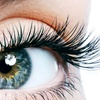 74% Off Synthetic Eyelash Extensions