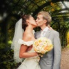 50% Off Wedding Gown Preservation