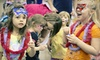 Midwest Kids Fest - Overland Park Plaza: $10 for Single-Day Admission for Four to the Midwest Kids Fest at Overland Park International Trade Center ($20 Value)
