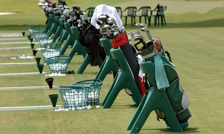 One or Two Buckets of Balls with Beer or Soda, or 30- or 60-Minute Lesson at The Aqua Golf Driving Range (Up to 70% Off)