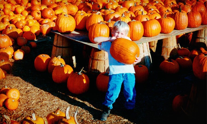 Carolyn's Country Cousins Pumpkin Patch - Liberty: $25 for Family Season Pass to Carolyn's Country Cousins Pumpkin Patch ($50 Value)