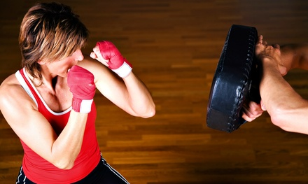 10 or 20 Kickboxing Classes with Gloves or Wraps at Rochester Fitness Martial Arts (Up to 80% Off)