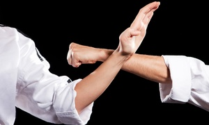Aikido Shuurin Dojo: One or Three Months of Unlimited Adult Aikido Classes at Aikido Shuurin Dojo (Up to 55% Off)