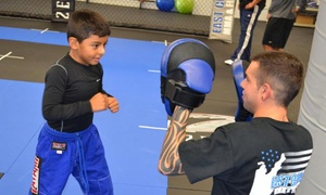 East Coast MMA & Fitness: 5 or 10 Beginning MMA Classes for Ages 5 and Older, or 5 or 10 Adult Classes at East Coast MMA & Fitness (Up to 56% Off)