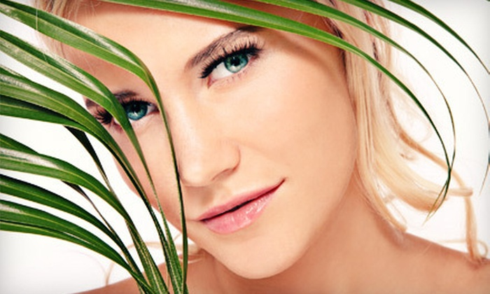 The Europa Medi Spa - Boca Del Mar: One or Three Herbal Cleansing or Europa Signature Facials at The Europa Medi Spa in Boca Raton (Up to 61% Off)