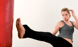 Way of the Orient Martial Arts Academy: $29 for One Month of Bi-Weekly Core Strike Fitness Classes at Way of the Orient Martial Arts Academy ($65 Value)