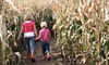 Cooper's Farm & Maze - Zephyr: Farm Visit with U-Pick Pumpkins for Two or Four at Cooper's CSA Farm & Maze (Up to 55% Off)