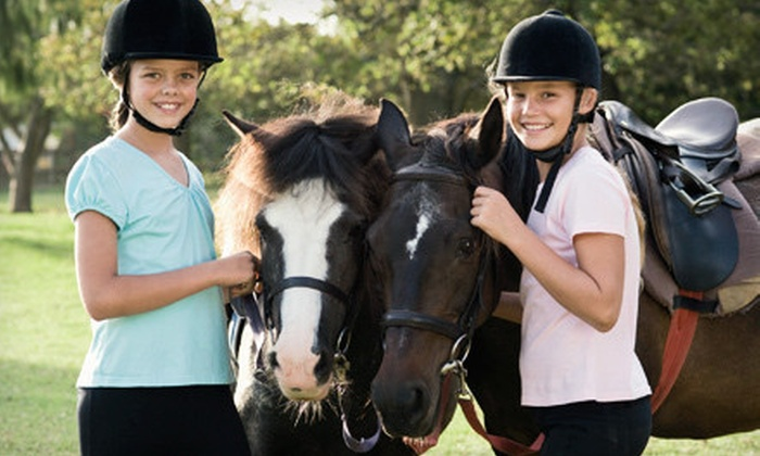 Allimax Farm - Columbia: Horseback-Riding Lesson for One, Two, or Four at Allimax Farm (Up to 64% Off)