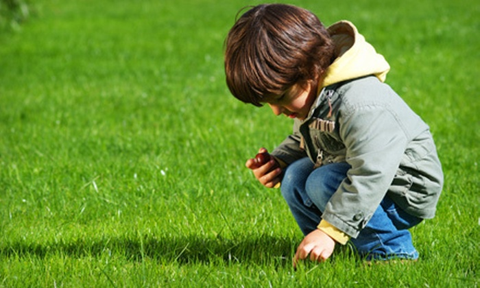 Lawn Doctor - Orange County: $29 for a Lawn Fertilization and Weed Treatment from Lawn Doctor ($61 Value)