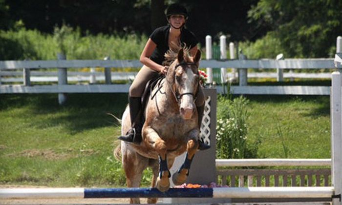 The Ajax Riding Academy - Ajax: Horseback-Riding Lesson for One, Two, or Four, or One-Month Bronze Lease at The Ajax Riding Academy (Up to 78% Off)