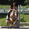 Up to 78% Off Horseback-Riding Lessons