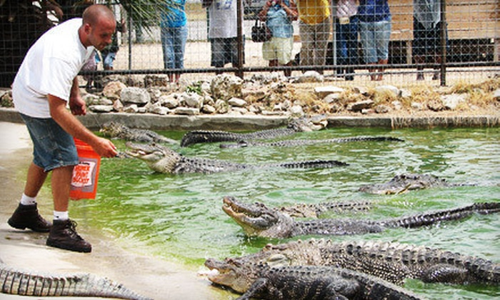 Animal World and Snake Farm Zoo - New Braunfels: Visit to Animal World and Snake Farm Zoo for Two or Four Adults (Up to 54% Off)