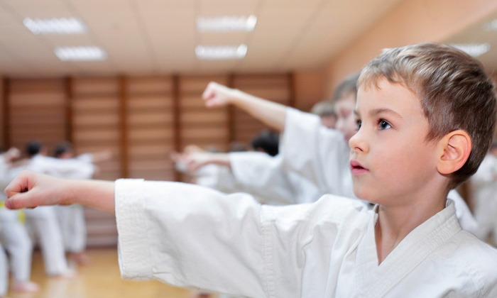 Willoughby Martial Arts Academy - Willoughby: $39 for One Month of Kids' Karate Classes at Willoughby Martial Arts Academy ($79 Value)