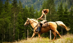 Haven Horse Ranch: 90-Minute Horseback Riding Lesson for One or Two at Haven Horse Ranch (Up to 57% Off)
