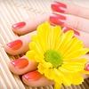 54% Off Shellac Manicure and Basic Pedicure