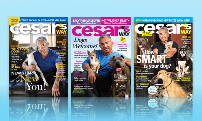1- or 2-Year Cesar's Way Magazine Subscription: 1- or 2-Year Cesar's Way Magazine Subscription. Multiple Options from $6–$10. Free Shipping.