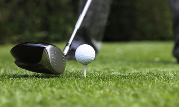 Woodside Meadows Golf Course - Romulus: 8 Holes of Golf for Two, 18 Holes of Golf for Two or 18 Holes of Golf with Hot Dogs for Four (Up to 61% Off)