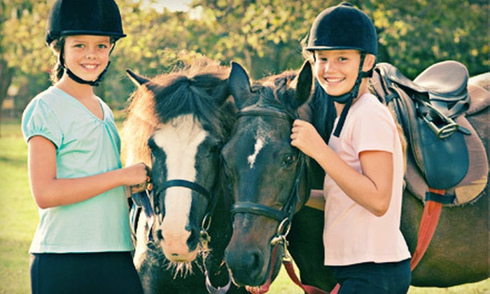 Wildwynn Stables - Youngsville: Riding Lesson for Up to Four or Five-Day Summer Camp for One at Wildwynn Stables in Youngsville (Up to 53% Off)