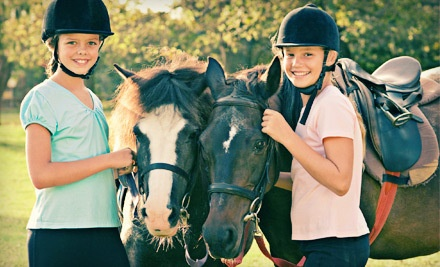 60-Minute Group Horseback-Riding lesson for up to Four (a $160 value) - Wildwynn Stables in Youngsville