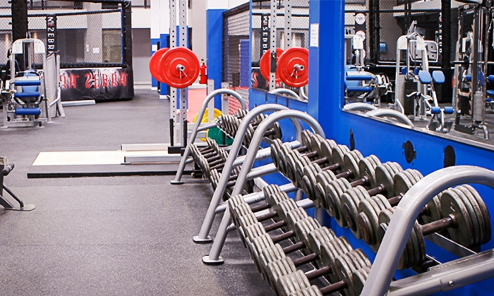 Dan Henderson's Athletic Fitness Center - Temecula: $59 for aOne-Month Membership toDan Henderson's Athletic Fitness Center($258.99 Value)