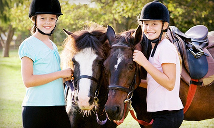 Raintree Equestrian Center - Olive Branch: One, Two, or Four 60-Minute Horseback-Riding Lessons at Raintree Equestrian Center (Up to 55% Off)