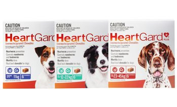 HeartGard Worm Protection Chews