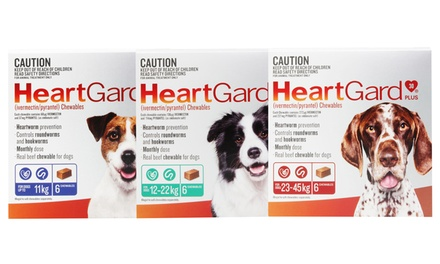 From $34.95 for a Pack of Six HeartGard Plus Worm Protection Chews (Don't Pay up to $61.99)