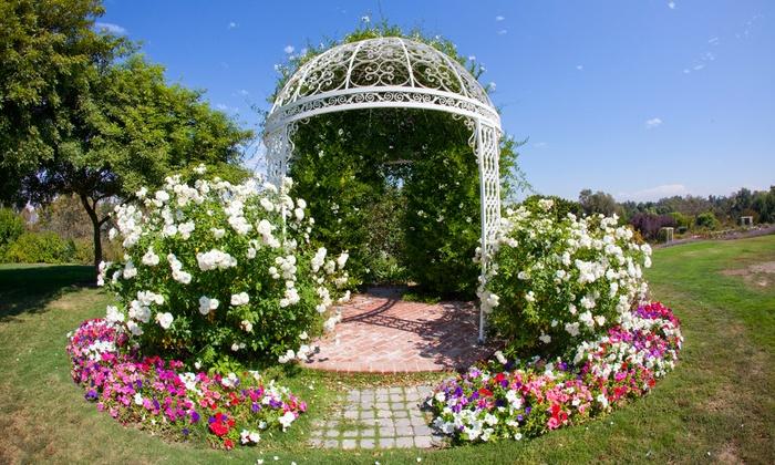 South Coast Botanic Garden - Palos Verdes Peninsula: Individual or Family Plus Membership for One Year to South Coast Botanic Garden (48% Off)
