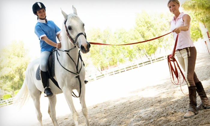 Luton Riding Academy - Grosse Ile: $22 for 60-Minute Private Horseback-Riding Lesson at Luton Riding Academy ($45 Value)