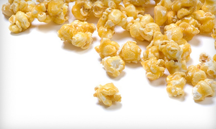 Patty's Old Fashioned Popcorn - Hyde Park: 1- or 3-Gallon Gourmet Popcorn Tin or Two 8-Ounce Bags of Popcorn at Patty's Old Fashioned Popcorn (Up to 60% Off)