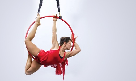 One, Three, or Five Aerial-Arts Classes at Vault Houston (Up to 44% Off)