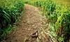Rio Grande Community Farm Maize Maze - Albuquerque: Corn Maze Visit for Two or Four at Rio Grande Community Farm Maize Maze (Up to Half Off)